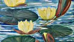 Yellow water lily – sold